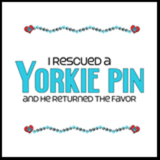 I Rescued a Yorkie Pin (Male Dog)