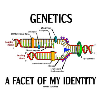 Genetics A Facet Of My Identity DNA Biology Saying