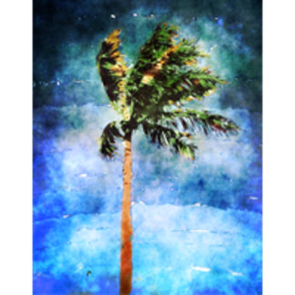 Palm Tree In A Tropical Storm