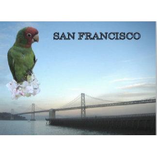 Bay Bridge With Parrot