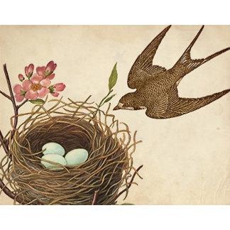Vintage Bird's Nest