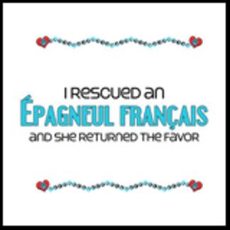 I Rescued an Épagneul Français (Female Dog)
