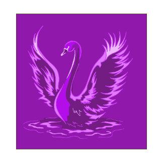 Swafari Swan