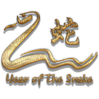 Best Year of The Snake T-Shirt