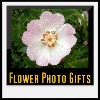 Flower Photo Gifts