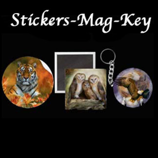 Stickers-Magnets-Keychains-Buttons