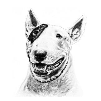 Cute Bull Terrier dog art