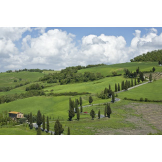 Italy, Tuscany. La Foce. A curved road winds up