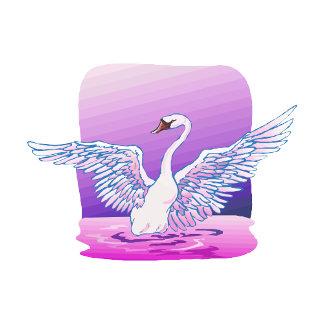 Swindie Swan