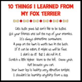 10 Things I Learned From My Fox Terrier Joke