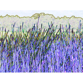 Abstract reeds in purple and white