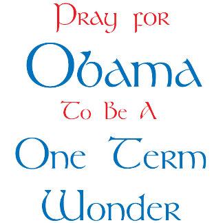 Obama - One Term Wonder