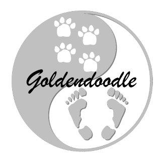 yin yang goldendoodle