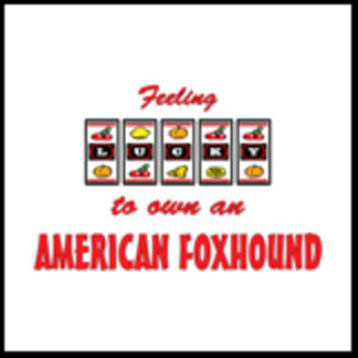 Feeling Lucky to Own an American Foxhound