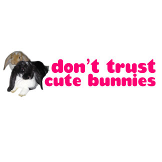 Don't Trust Cute Bunnies