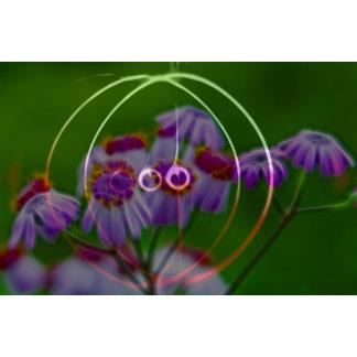 FlowerImplosion 5