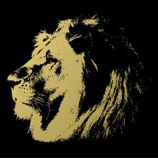 Lion Lions Big Cat Endangeres Species