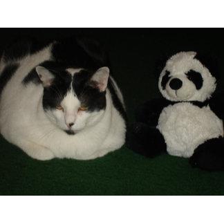Tuxedo Cat and Panda Friends