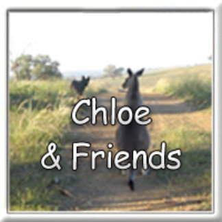 Chloe the Kangaroo and Friends