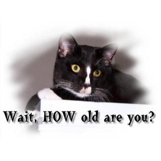Wait, HOW old are you? Surprised cat looks right