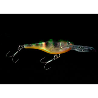 Fishing lure for fishing guides and fishermen