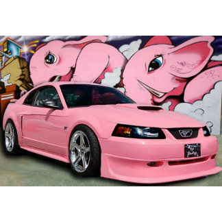 PINK MUSTANG PRODUCTS