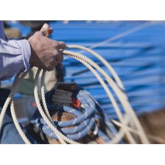 Tucson, Arizona: Ropes and equipment of rodeo 2