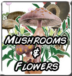 Mushrooms and Flowers