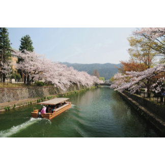 Japan, Kyoto. Flower viewing on the boat