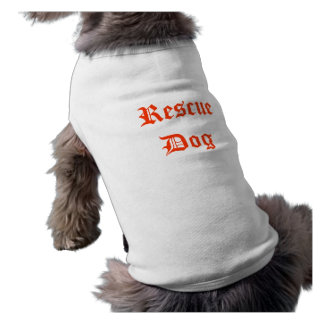 Pooch Passion for Fashion