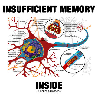 Insufficient Memory Inside Neuron Synapse