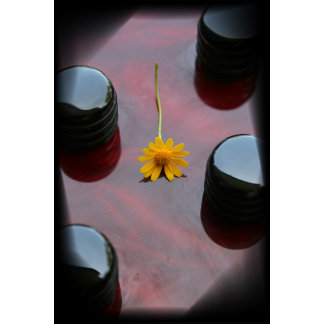 Yellow flower, red bass body black control knobs