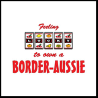 Feeling Lucky to Own a Border-Aussie