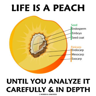 Life Is A Peach Until You Analyze It Carefully