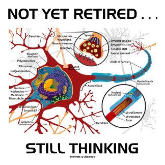 Not Yet Retired ... Still Thinking Neuron Synapse