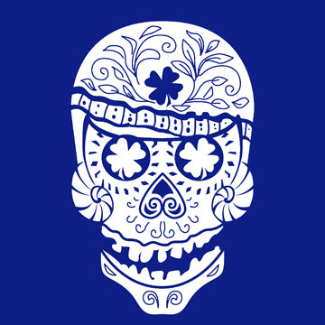Hawaii Skull