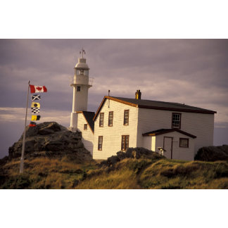NA, Canada, Newfoundland, Lobster Cove. Lobster