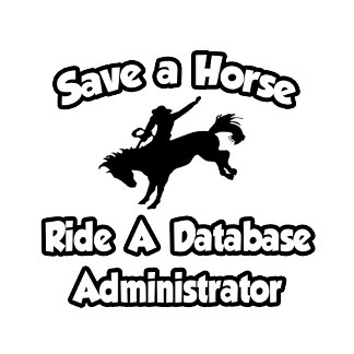 Save a Horse, Ride a Database Administrator