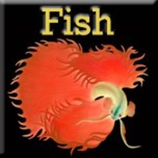 Fish and Aquatic Animals