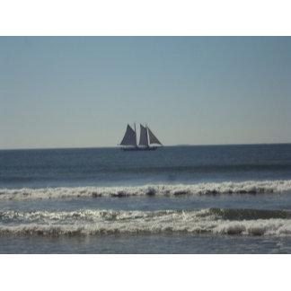 SAIL on the Seas