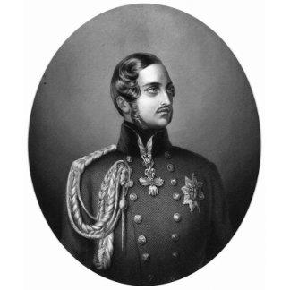 Prince Albert Portrait