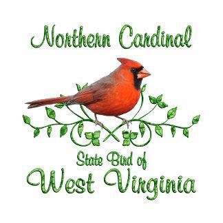 Cardinal West Virginia Bird