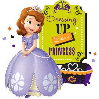 Dressign up Like a Princess