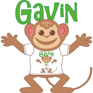 Little Monkey Gavin