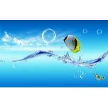 fish_dreamy_world-1920x1200.jpg
