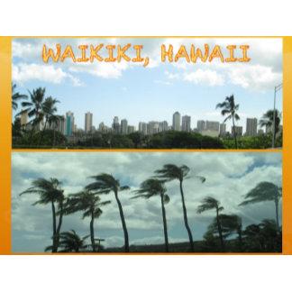 HAWAII COLLAGE #15