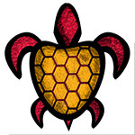 Orange Shell Turtle