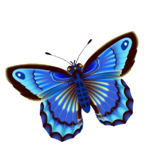 Butterfly Blue 108 items,