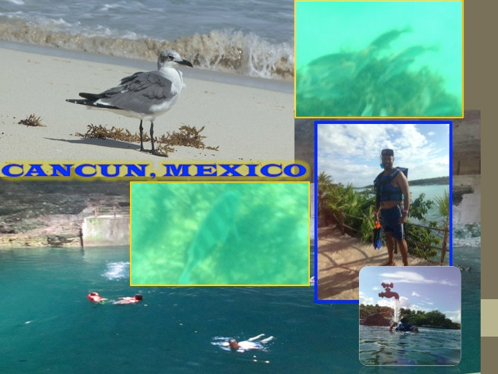 CANCUN COLLAGE 10