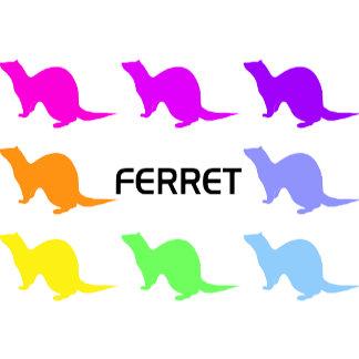 Colorful ferret (2)